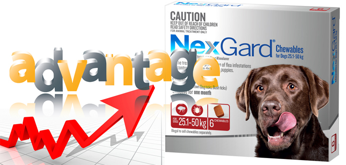 Advantages of NexGard Chewables for Dogs