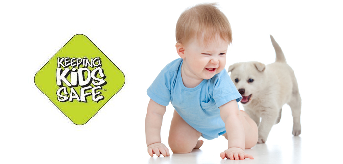 TIPS TO KEEP KIDS SAFE AROUND DOGS