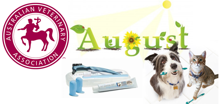 August is AVA Pet Dental Health Month