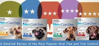 Nexgard Review – A Detailed Review of the Most Popular Oral Flea and Tick Control