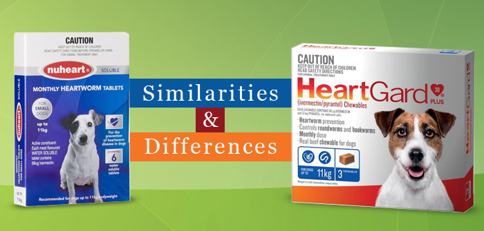 Similarities and Differences Between Nuheart and Heartgard Plus