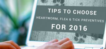 Tips to Choose Heartworm, Flea and Tick Preventives for 2016