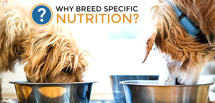 Why Breed Specific Nutrition?