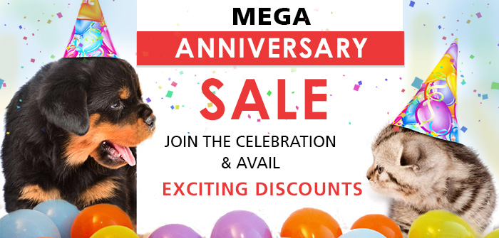 Mega Anniversary Sale: Join The Celebration And Avail Exciting Discounts