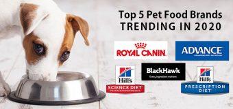 Top Five Pet Food Brands Trending in 2020