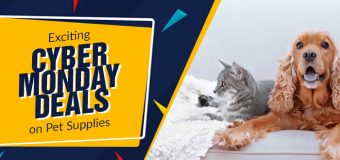 Exciting Cyber Monday Deals on Pet Supplies