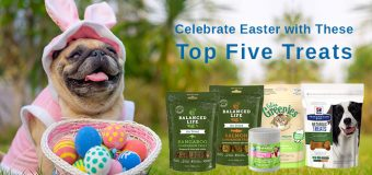Celebrate Easter with These Top Five Treats