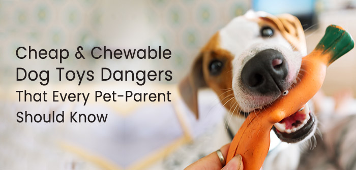 cheap-chewable-toys