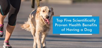 Five Scientifically Proven Health Benefits of Having a Dog