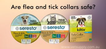 Are flea and tick collars safe?