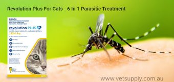 Revolution Plus For Cats- A Powerful 6 In 1 Parisitic Treatment