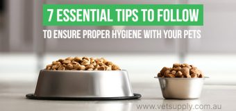 7 Essential Tips To Follow To Ensure Proper Hygiene With Your Pets