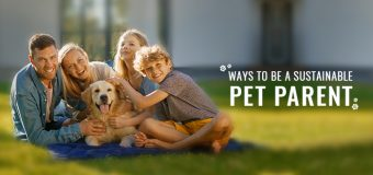 Ways to be a Sustainable Pet Parent