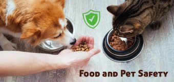 Food and Pet Safety